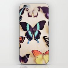 Butterfly Collection iPhone & iPod Skin