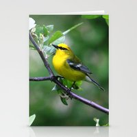 Blue-winged Warbler Stationery Cards