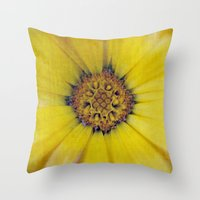 Find Out Where Joy Resid… Throw Pillow