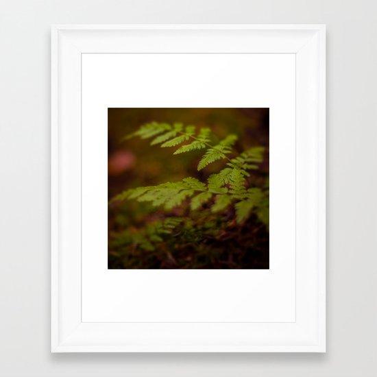 F E R N Framed Art Print