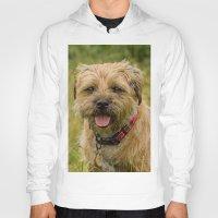 Border Terrier Dog Hoody