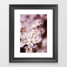Tender spring Framed Art Print