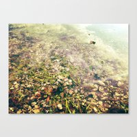 Puddle Me Canvas Print