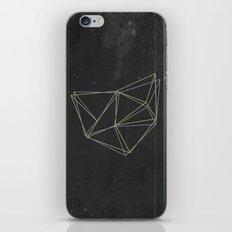 Geo iPhone & iPod Skin