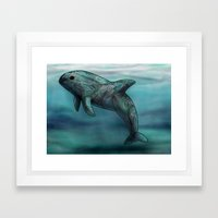 Vaquita  Framed Art Print
