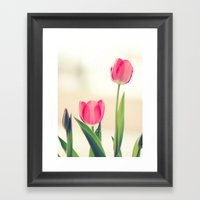Love Tulips. Framed Art Print