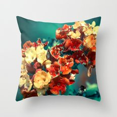 dry your eyes Throw Pillow