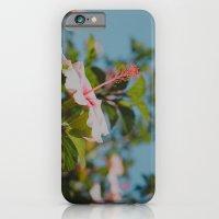 Soft Pink Hibiscus iPhone 6 Slim Case