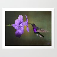 Art Print featuring Hummingbird And Mexican … by Spadecaller