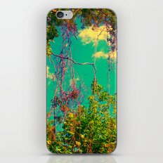 Vines iPhone & iPod Skin