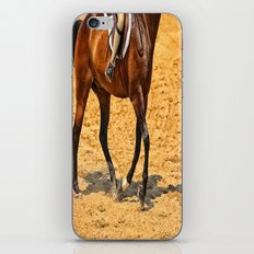 Horse Gallop iPhone & iPod Skin