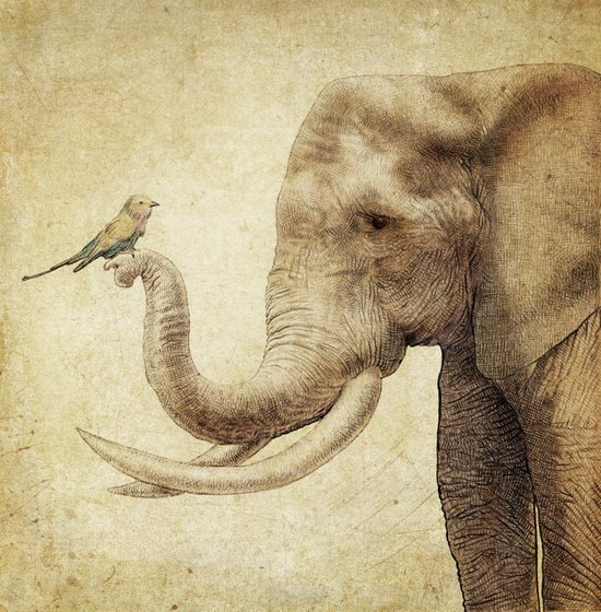 A New Friend (sepia drawing) Canvas Print