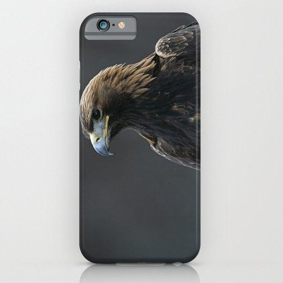 GOLDEN EAGLE PORTRAIT 1 iPhone & iPod Case