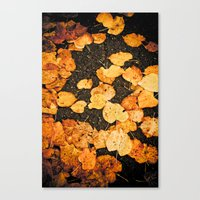 Fallen leaves Canvas Print