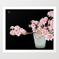 Heavenly Blossom on Black Art Print