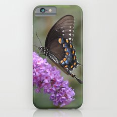 ✿ Butterfly εїз  iPhone 6s Slim Case