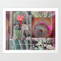 Flowering Cactuses  Art Print