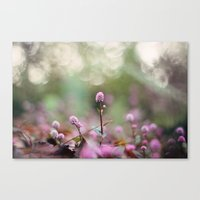 Stand Back Up Canvas Print