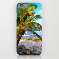 Mexican Palm iPhone 6 Slim Case