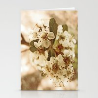 white blossoms on a tree. Stationery Cards