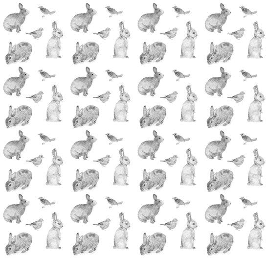 Bunny & Bird Art Print