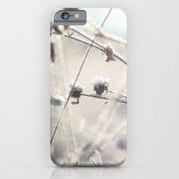 Frost & Sunshine iPhone 6 Slim Case