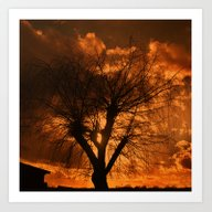 Romantic Evening Tree Art Print