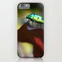iPhone & iPod Case featuring Iridescent Bug (Philippines) by Dr. Tom Osborne