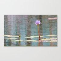 Purple Pond Flower Canvas Print