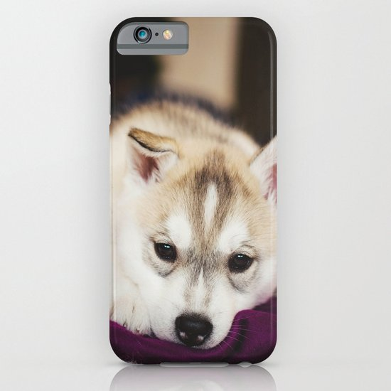 husky puppy. iPhone & iPod Case