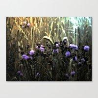 Hidden Fields Canvas Print