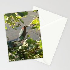 Green Heron Stationery Cards