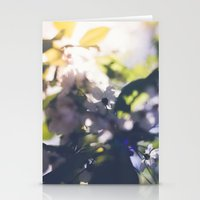 Contre-Jour Blooming Blossom Stationery Cards