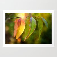 Chameleon Leaves Art Print
