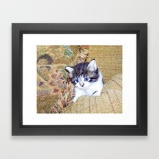 Little Smokey Framed Art Print