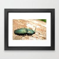 Bug on a Log Framed Art Print