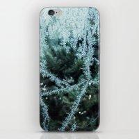 Seasonal window dressing iPhone & iPod Skin