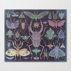 Entomologist's Wish (The Neon Version) Canvas Print