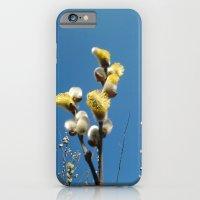 iPhone & iPod Case featuring Weidenkätzchen by naturepic