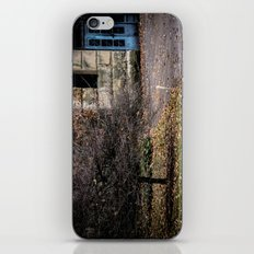 Blue Doors iPhone & iPod Skin