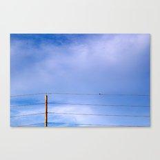 Free Mind Canvas Print