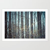 Forest of Trees. Art Print