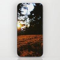 Fall's Last Light iPhone & iPod Skin