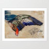 L'AILE DE DURER (DURER'S… Art Print