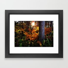 Autumn (in Scotland) Framed Art Print