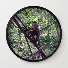 Monkey Sanctuary – Monkey with attitude Wall Clock
