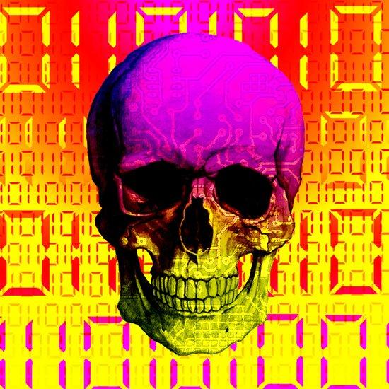 Skull circuit in a digital code. Art Print