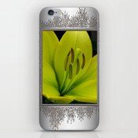 Hybrid Lily named Trebbiano iPhone & iPod Skin