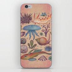 Aequoreus Vita II / Mari… iPhone & iPod Skin