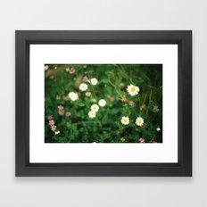 Film Flowers Framed Art Print